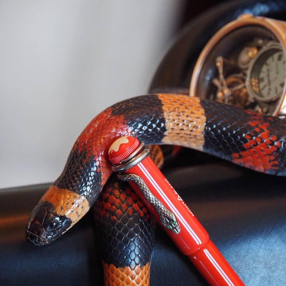 Montblanc Snake Schlange New York
